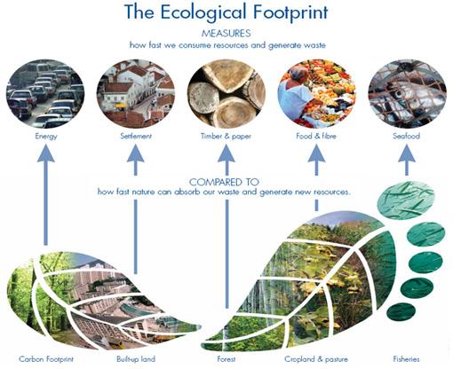 7db5784b278 Ökoloogiline jalajälg  (http://www.footprintnetwork.org/en/index.php/gfn/page/footprint_basics_overview/)